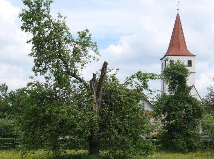 Altringen_Blick_auf_Kirche.jpg