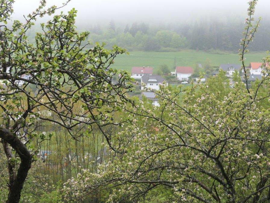 Burladingen_Blick_auf_den_Ort.jpg