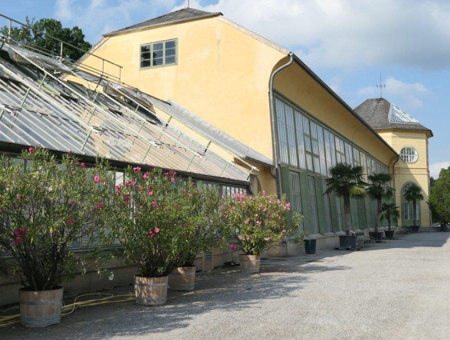 Eisenstadt_Schloss_Esterhazy.jpg