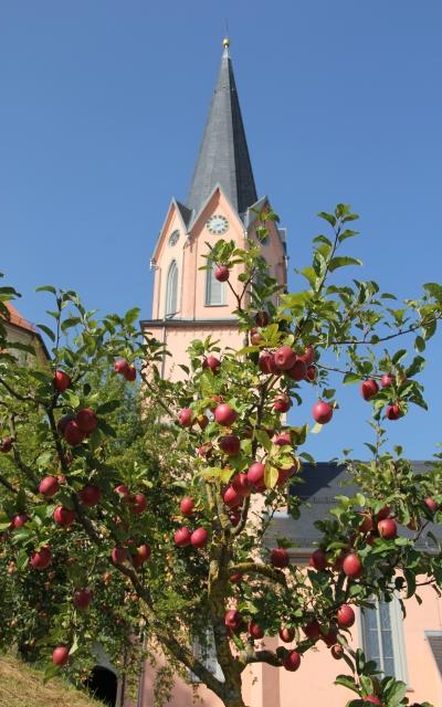 Klosterkirche_Bonlanden.JPG