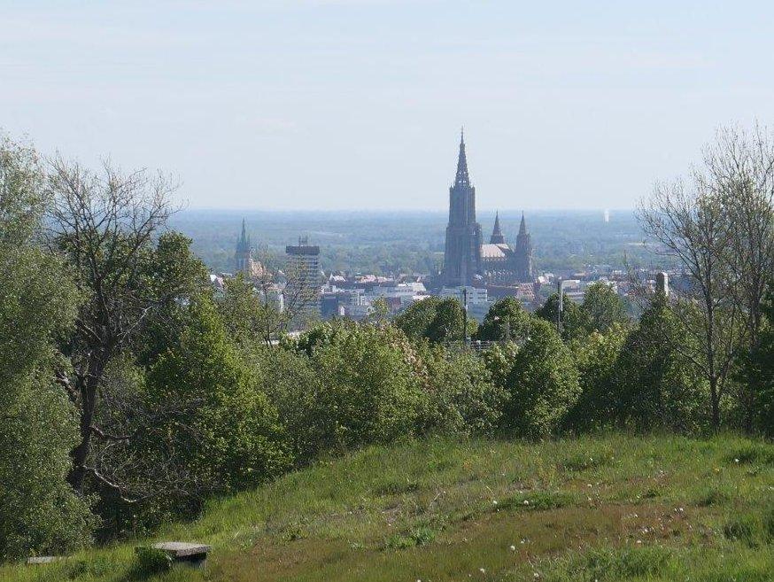 Ulm_Blick_auf_die_Stadt.jpg