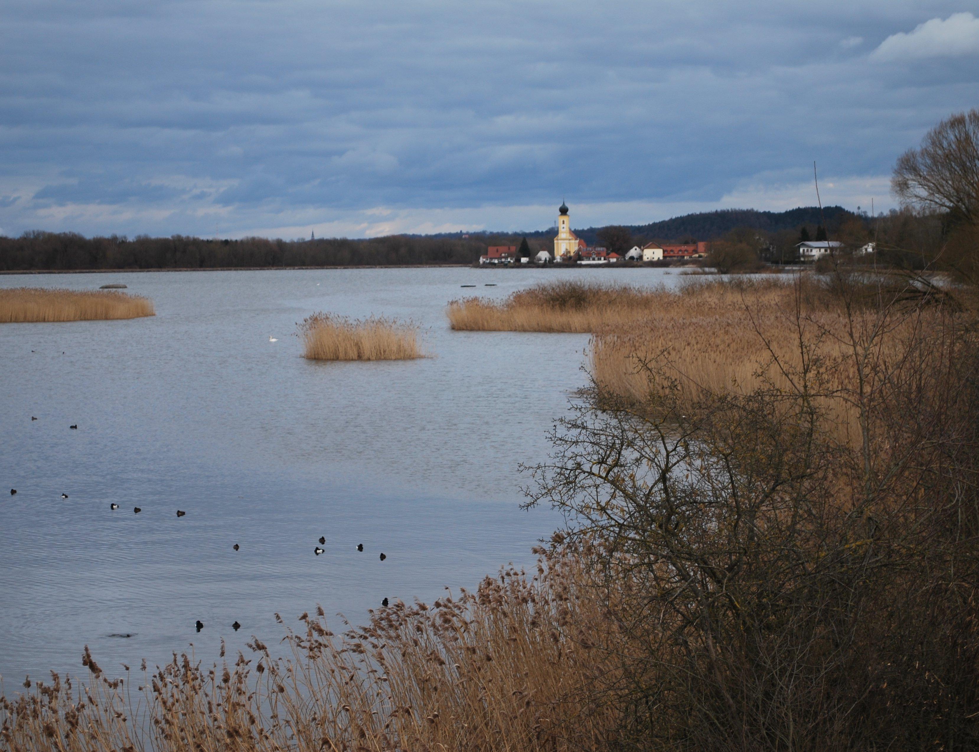 Vogelparadies_Echinger_Stausee.jpg
