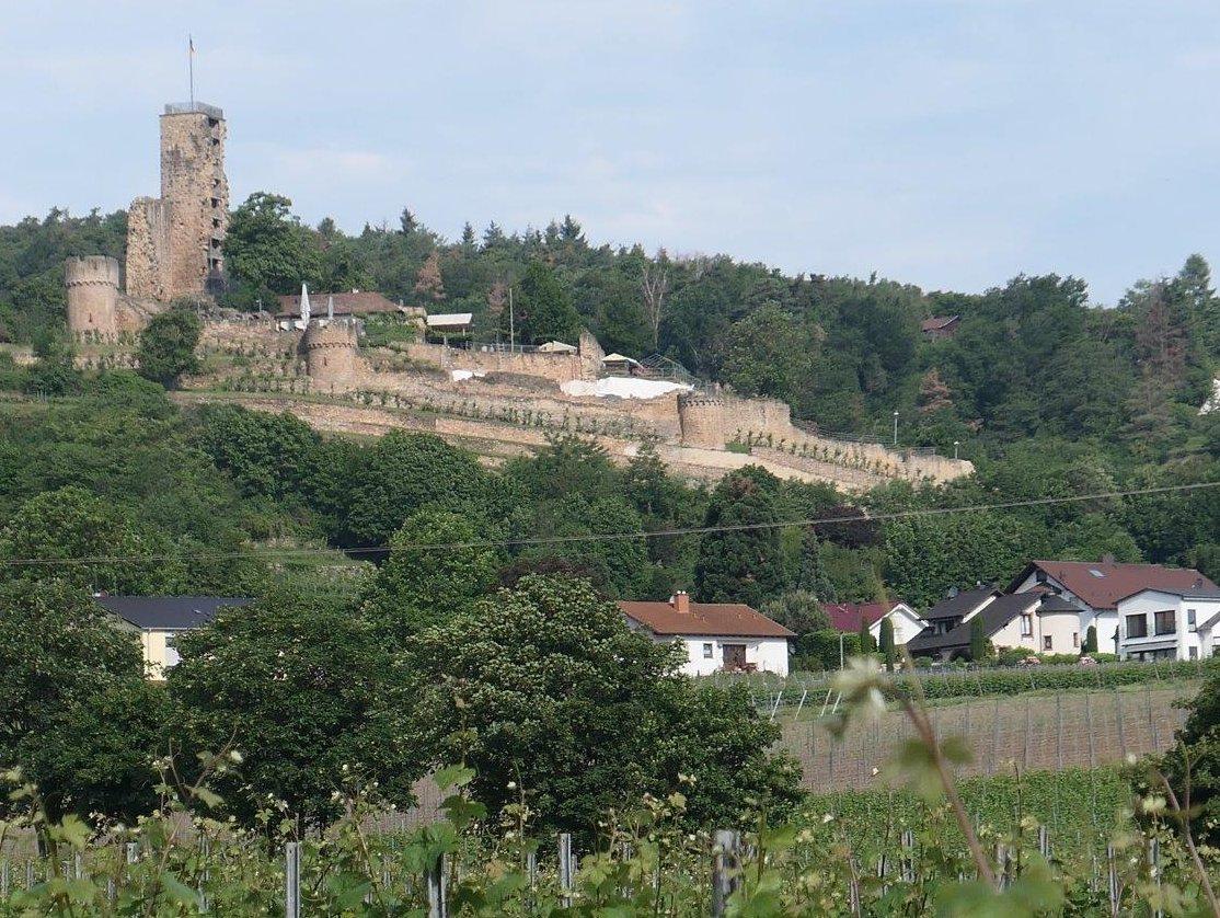 Wachenheim_Burgruine_Wachtenburg.jpg