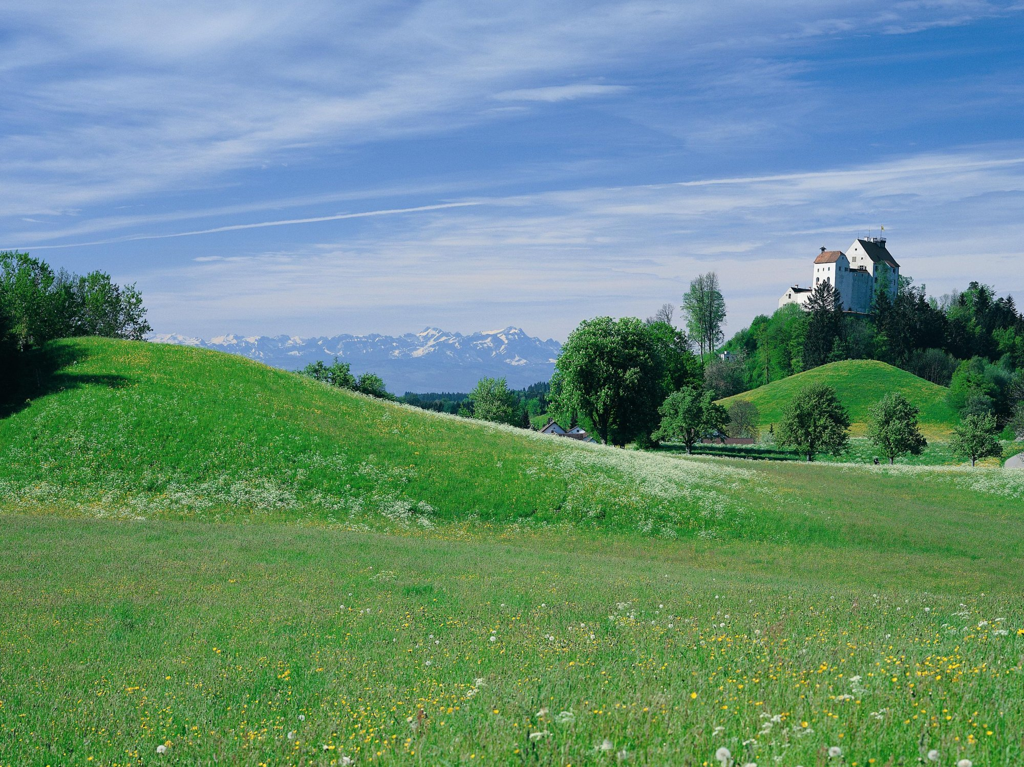 Waldburg_Blick_ueber_Wiesen_und_Burg.jpg