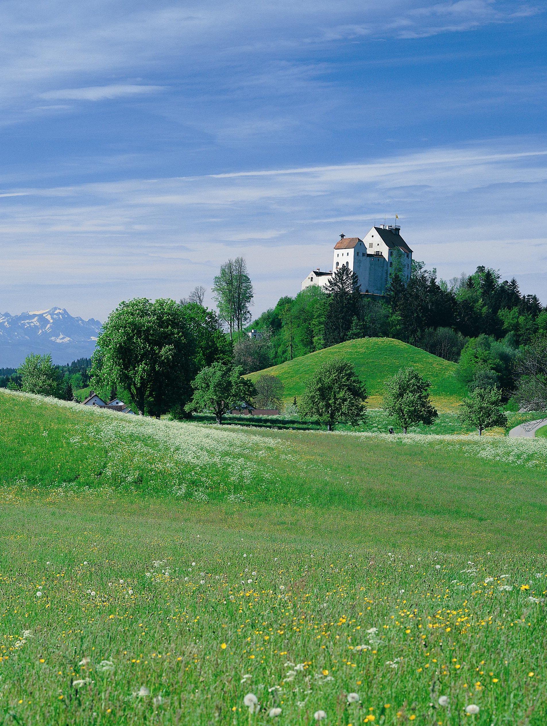 Waldburg_Blick_zur_Burg.jpg